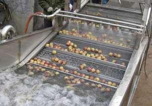 苹果果蔬清洗机