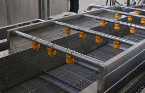蔬菜清洗机械设备