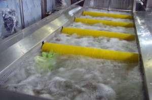 大型食品厂用蔬菜清洗机